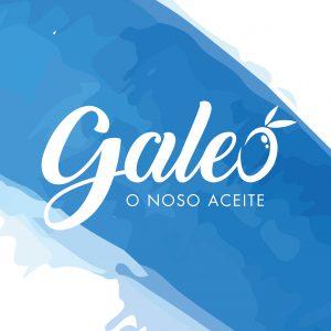 Galeo Galicia Aceite de oliva virgen Olivar de Moura